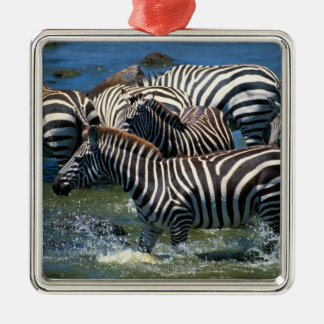 Herd of zebras 2 christmas ornament