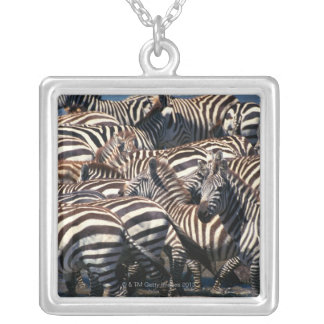 Herd of zebras silver plated necklace