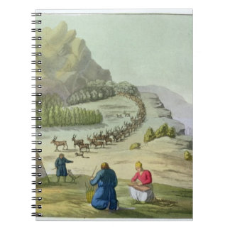 Herding Reindeer, Lapland, plate 47 from 'Le Costu Notebooks