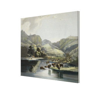 Herds of Bison and Elk on the Upper Missouri, plat Canvas Print