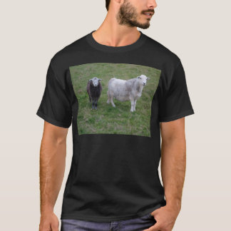 Herdwick Ewe and Lamb T-shirt