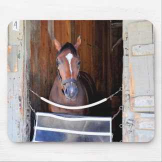 Here Comes Rosie in her Stall Mouse Pad