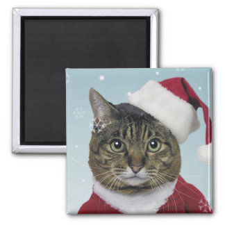 Here Comes Santa Claws Magnet