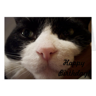 Here I am: Happy Birthday (Card with Cat) Card