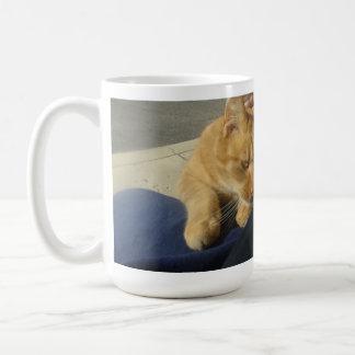here kitty basic white mug
