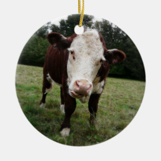 Hereford Cow Sticking out Tongue Christmas Ornament