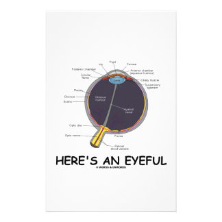 Here's An Eyeful (Eye Anatomy Humor) Stationery Paper