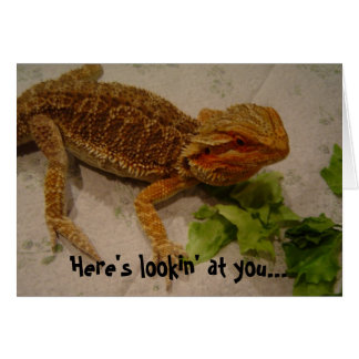 Here's Lookin' at You, Bearded Dragon Birthday Greeting Card