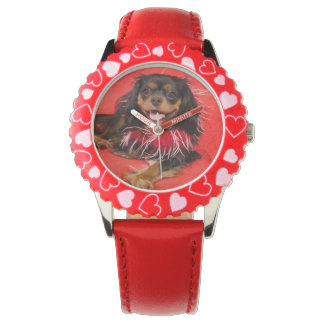 Here's Looking At Me! Cavalier King Charles Watch