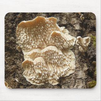 Hericium cirrhatum Mushroom Mouse Mat