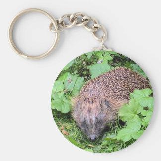 Herman Hedgehog Key Ring