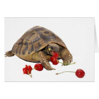 Hermann Tortoise and Strawberries Card