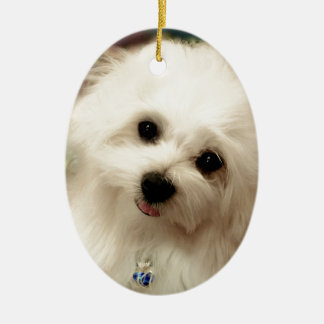 Hermes the Maltese Ceramic Oval Decoration