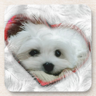 Hermes the Maltese Drink Coasters