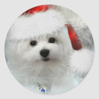 Hermes the Maltese Round Sticker