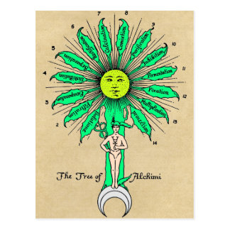 Hermes Tree of Alchemy Postcard