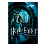 Hermione Granger 3 Posters