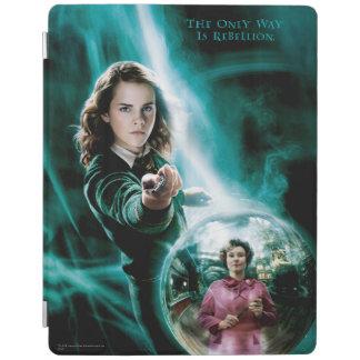 Hermione Granger and Professor Umbridge iPad Cover