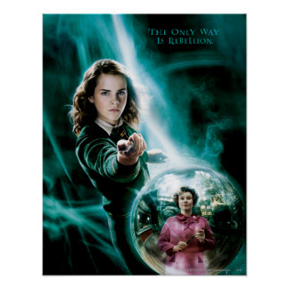 Hermione Granger and Professor Umbridge Poster