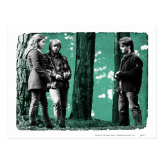 Hermione, Ron, and Harry 1 Postcard