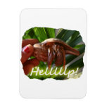 Hermit Crab and Help text , funny animal design Rectangle Magnets