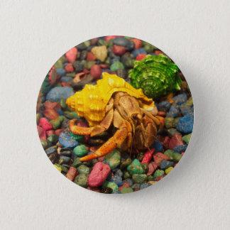 Hermit Crab Button 01