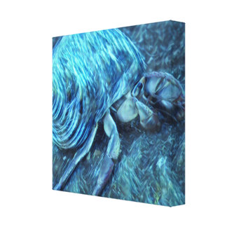 Hermit Crab Canvas Print