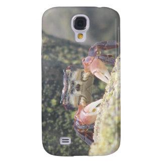 Hermit Crab Galaxy S4 Case