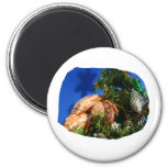 Hermit Crab in Tree blue background cutout Refrigerator Magnets