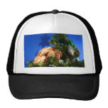 Hermit Crab in Tree blue background Hats