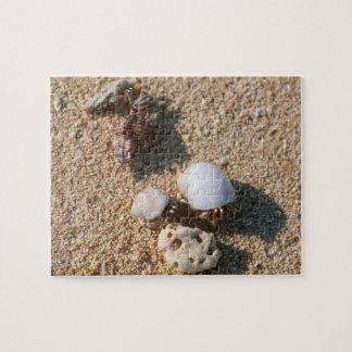 Hermit crab jigsaw puzzle