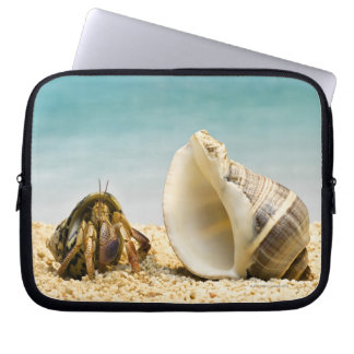 Hermit crab looking at larger shell laptop sleeve