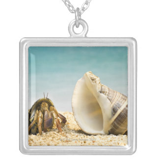 Hermit crab looking at larger shell silver plated necklace
