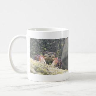 Hermit Crab Coffee Mugs