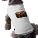 Hermit Crab on Ice Cubes Dog Shirt