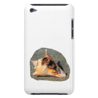 Hermit Crab on Sand Coming out of shell iPod Case-Mate Cases