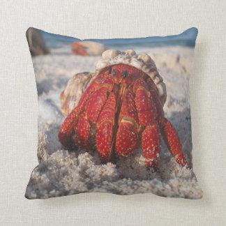 Hermit Crab on the Beach Cushion