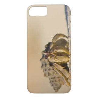 Hermit Crab on white sand beach of Isla Carmen, iPhone 8/7 Case