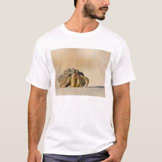 Hermit Crab on white sand beach of Isla Carmen, T-Shirt