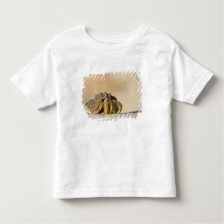 Hermit Crab on white sand beach of Isla Carmen, Toddler T-Shirt