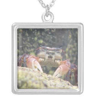 Hermit Crab Square Pendant Necklace