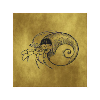 Hermit Crab Stretched Canvas Print