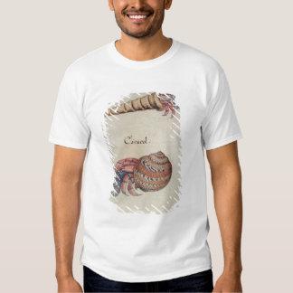 Hermit Crab T Shirts