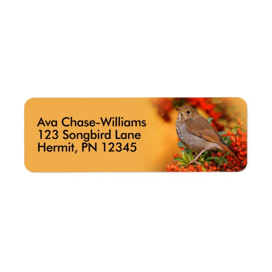 Hermit Thrush on the Scarlet Firethorn Return Address Label