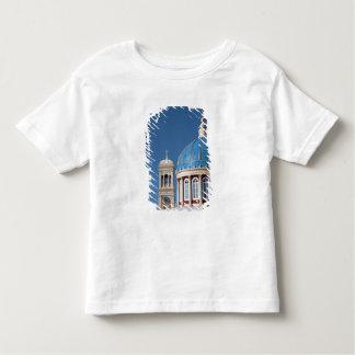 Hermoupolis, Syros Island, Greece. Blue dome of Toddler T-Shirt