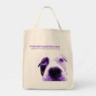 #herodotusperfectness tote bag
