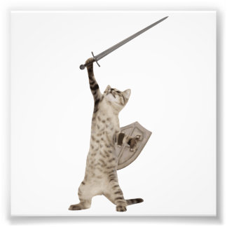 Heroic Warrior Knight Cat Art Photo