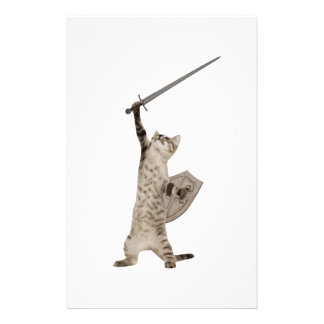 Heroic Warrior Knight Cat Stationery