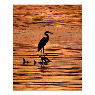 Heron at Sunset Art Photo