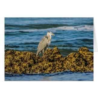 Heron Bird Greeting Card